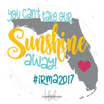 Florida - You Can't Take Our Sunshine Away! DECAL